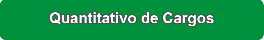 quantitativo_de_cargos.png